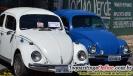 Encontro de Carros Antigo